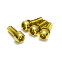 Reverse Disc Brake Bolt Set M6 x 18 mm - 4 Stück - Gold -...