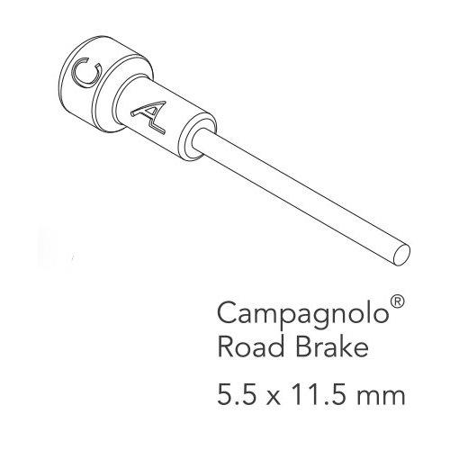 für Campagnolo Rennrad